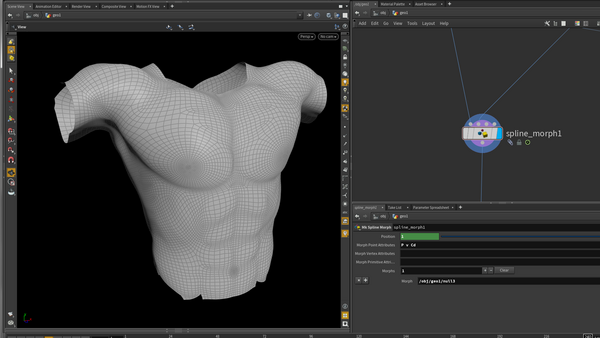 SideFx Houdini Screenshot with body model